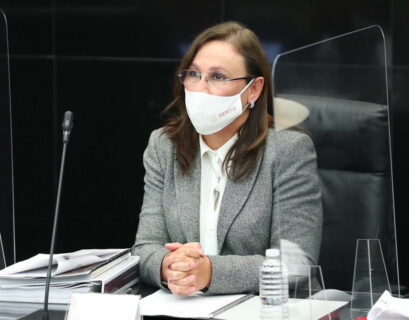 Rocío Nahle-Sener