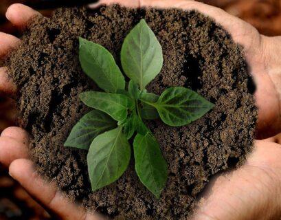 empresas-sustentables