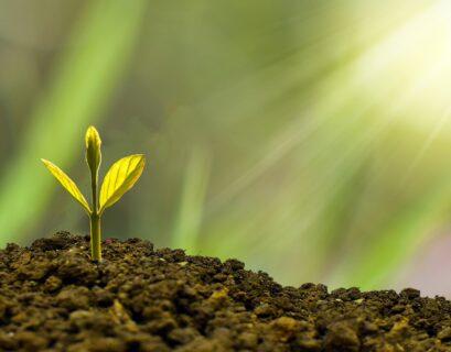 Sustainalytics Bloomberg