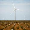 Amazon-renovables