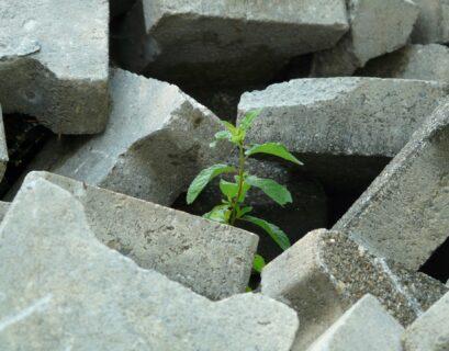 cemento emisiones